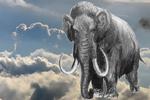 Mammuts: Noch behaupten Rechtsanwälte nicht, dass es sie gibt