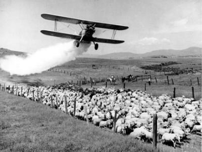 DDT-Sprüher. USA 1948 (AP)