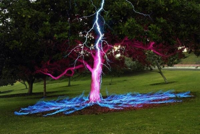 Long exposure photo of a lightning bolt hitting a tree. Photo by Darren Pearson.